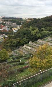 横浜日野墓苑 頂上からの眺め 墓地