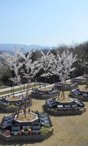 神戸三田メモリアルパーク−基本−樹木葬「さくら」 石材 墓石 花 石版 お墓 墓地 埋葬