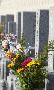 霊園 墓石