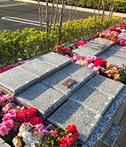 山手の杜 樹木型墓地「アザレア」