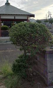 霊園 お墓 墓石 石材 墓地